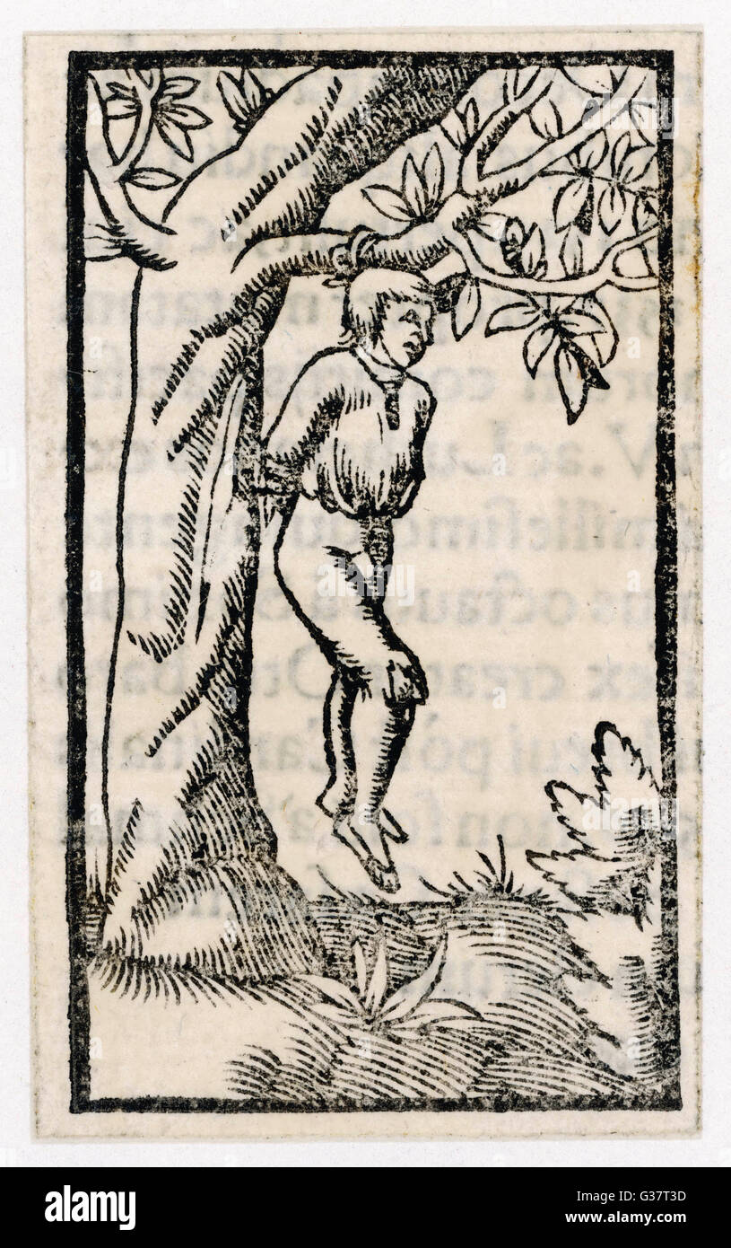 Prisoner is hanged from a  tree.         Date: Sixteenth century - Stock Image
