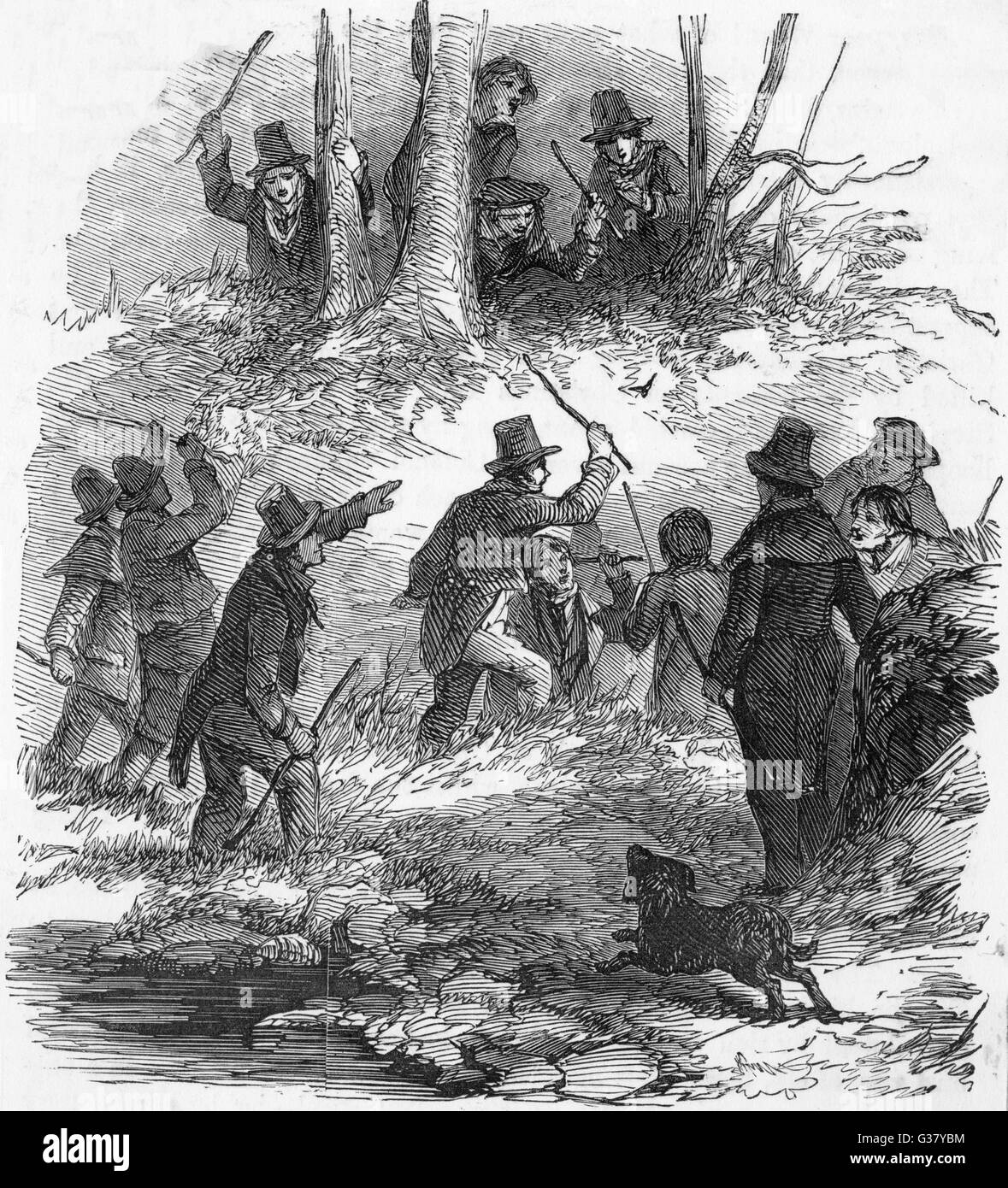 Irish country folk hunt the wren on Christmas Day (picture 1 of 2).     Date: 1850 - Stock Image