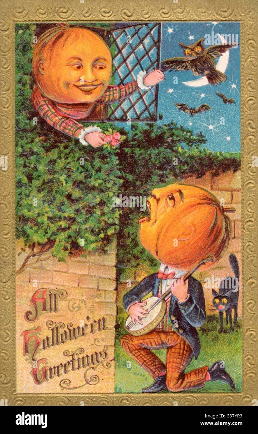 When a gentleman pumpkin  serenades a lady pumpkin on  Hallowe'en, e'en the cats and  owls are alarmed ! - Stock Image