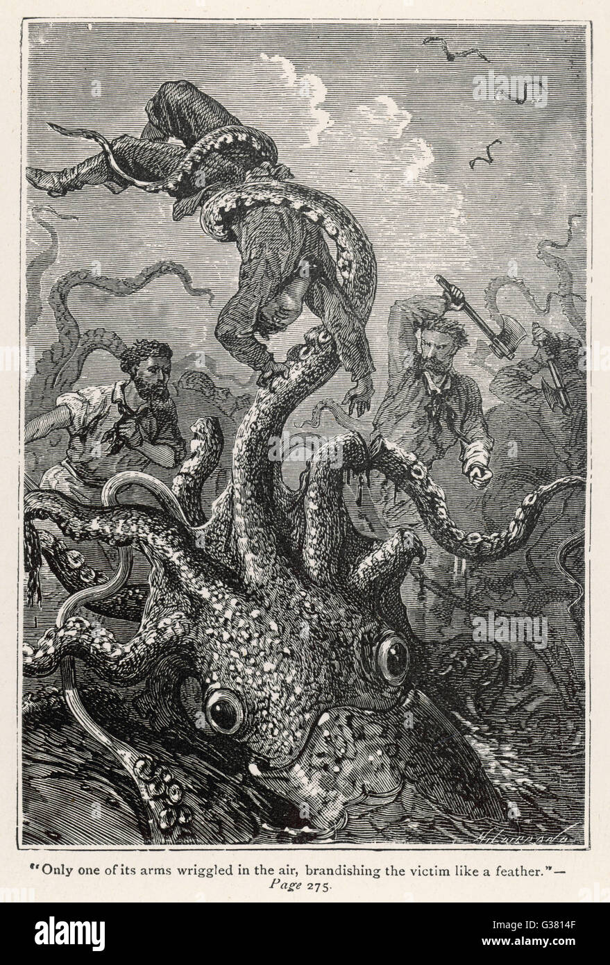 '20,000 LIEUES SOUS LES MERS' [20 000 leagues under the sea]  The squid claims a victim       Date: 1870 - Stock Image