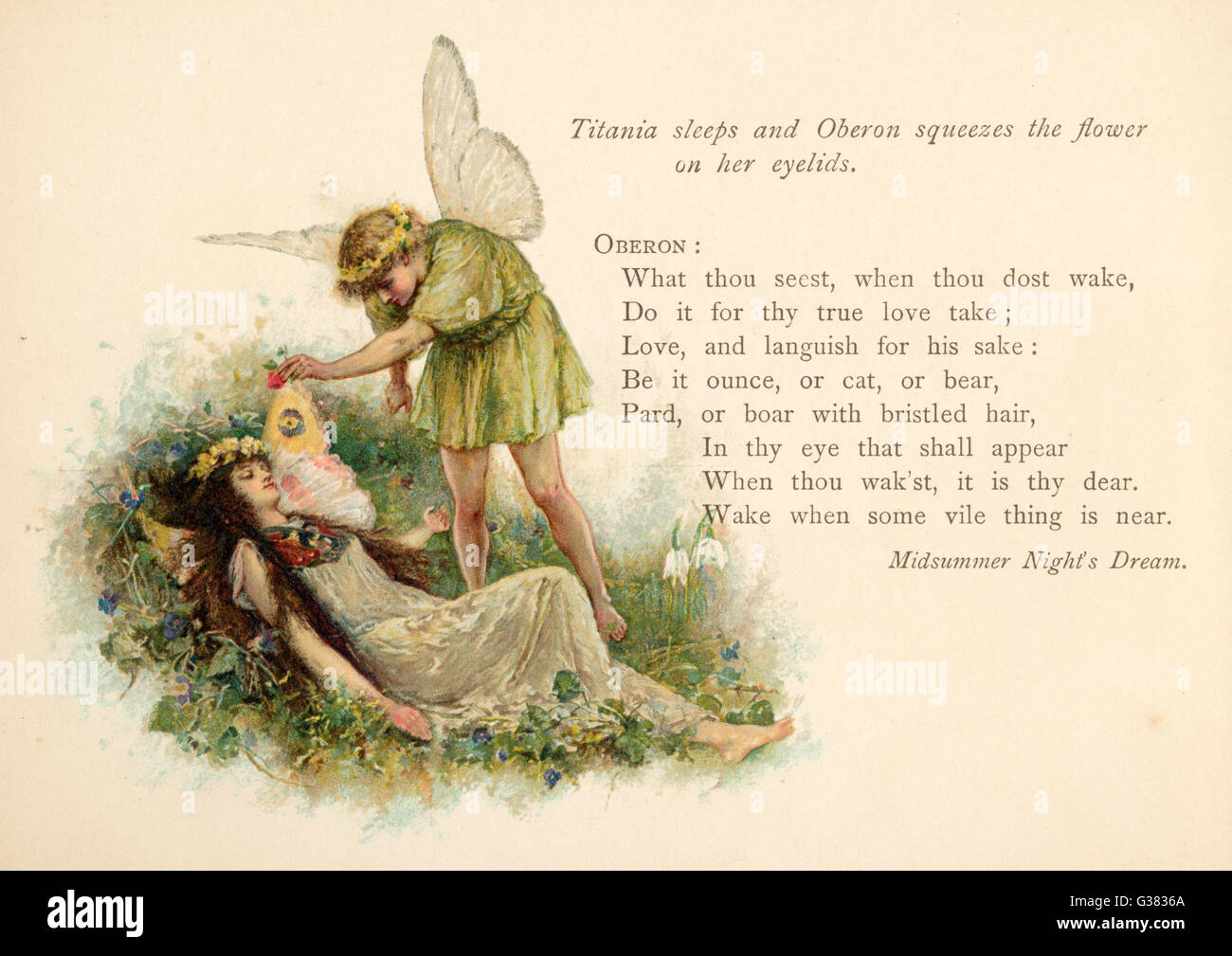 Act II, Scene II Oberon squeezes the flower  onto Titania's eyelids - Stock Image
