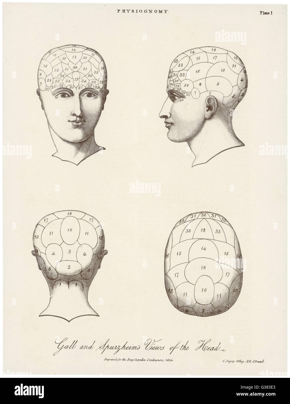 The phrenological systems of Gall and Spurzheim        Date: 1824 - Stock Image