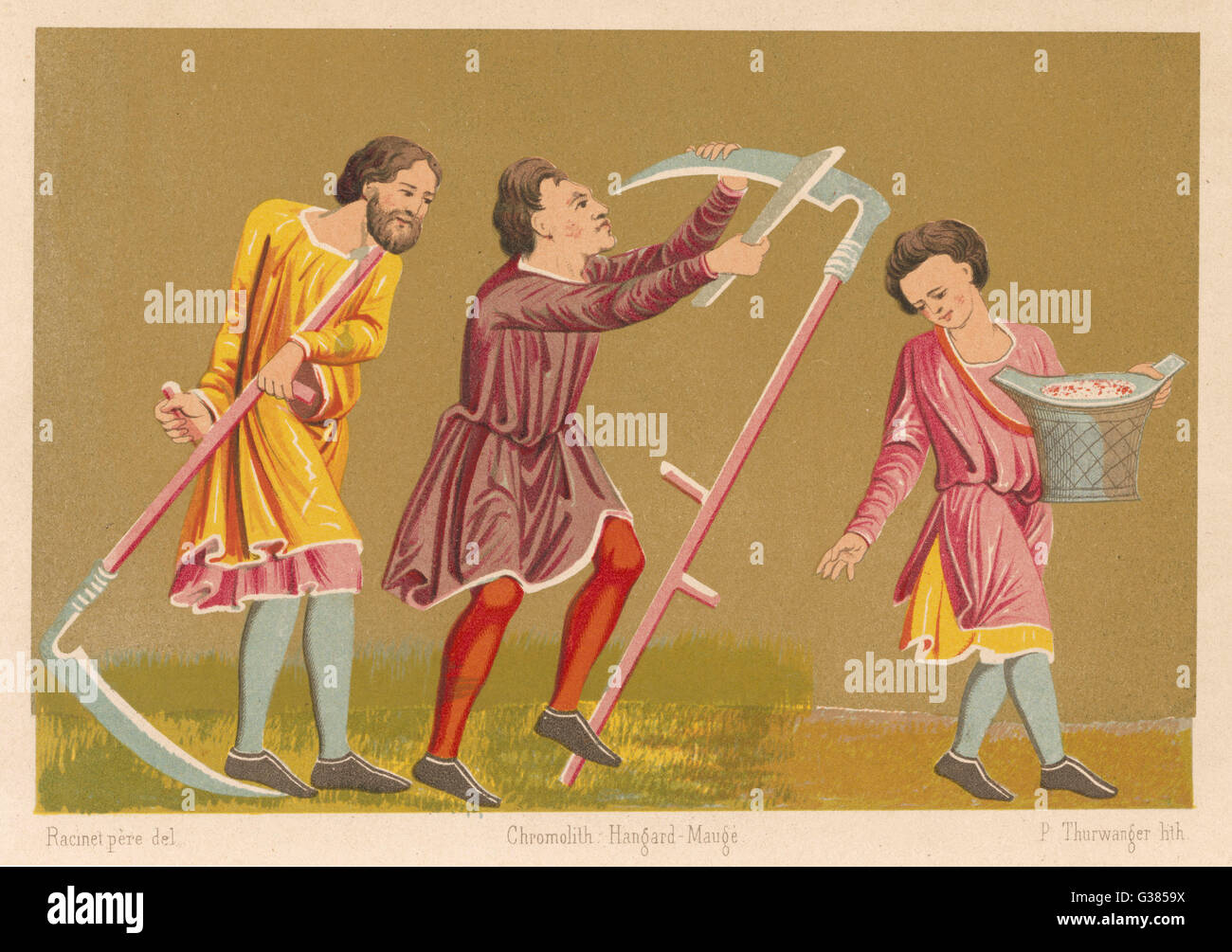 Scything and sowing          Date: 13th century - Stock Image