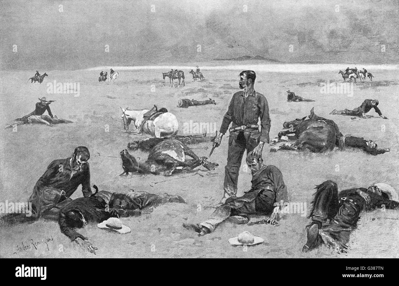 The aftermath of a cattle  fight - what an unbranded cow  has cost       Date: 1895 - Stock Image