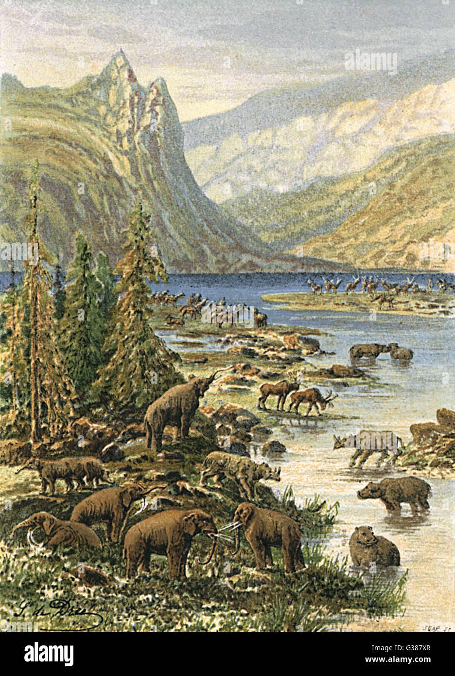 European landscape of  the Tertiary period (Paleocene to Pliocene)        Date: 65 - 1.8 million BC - Stock Image