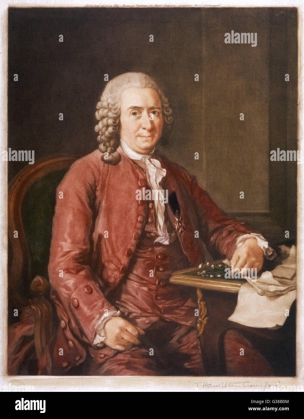 CARL VON LINNE known as LINNAEUS  Swedish naturalist and  botanist.      Date: 1707-1778 Stock Photo