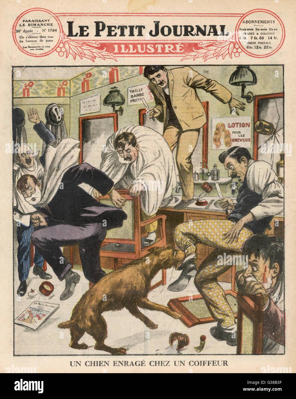 Rabies, hydrophobia