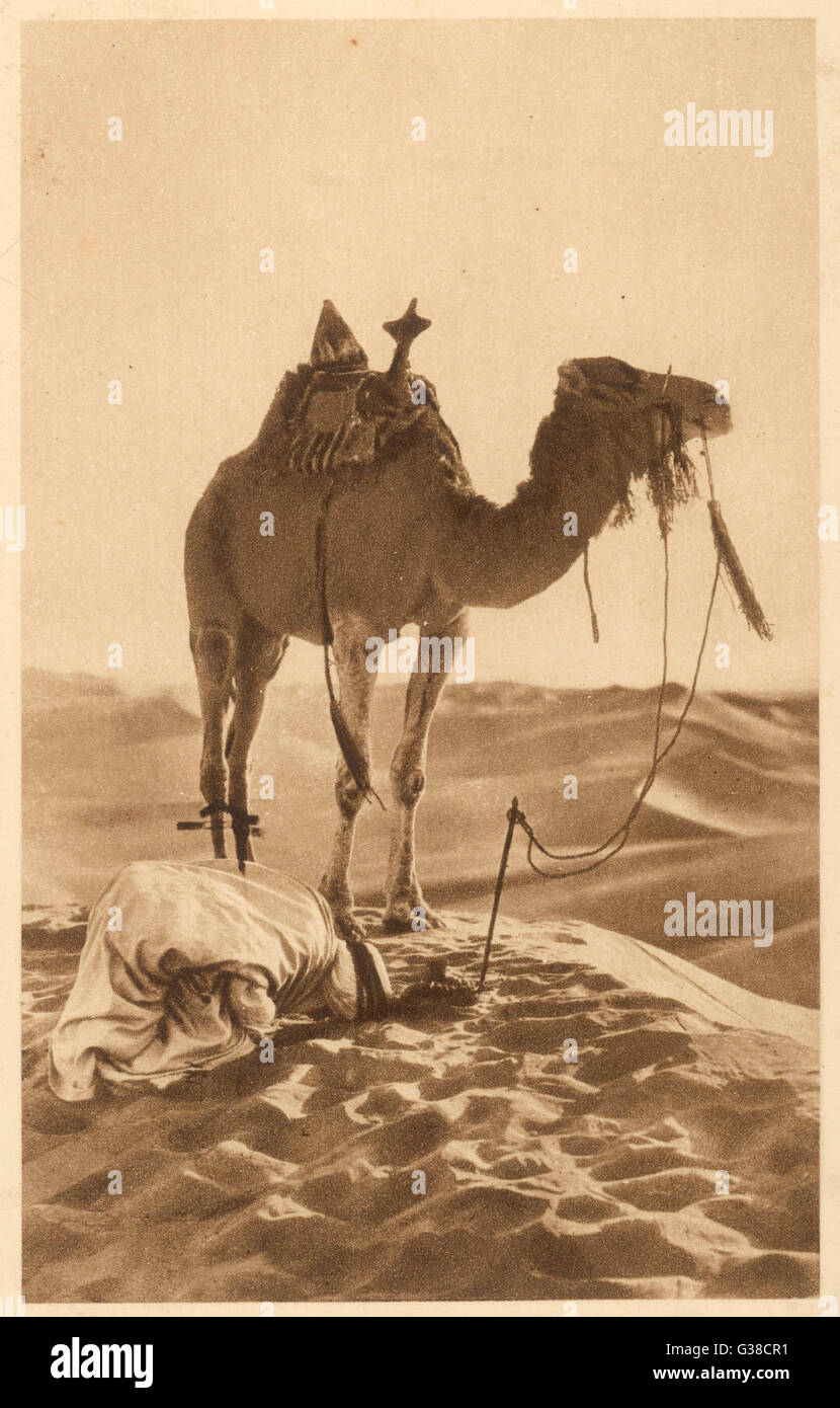 A Moslem prays in the desert,  his face towards Mecca, while  his camel waits patiently        Date: circa 1920 - Stock Image
