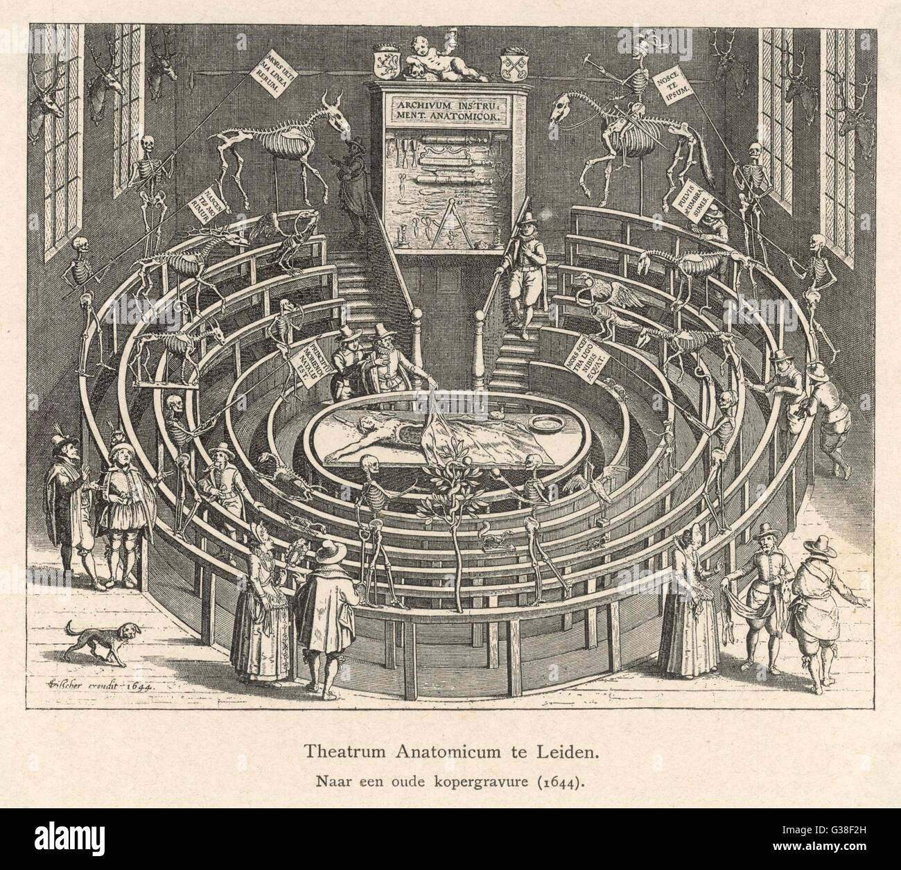 THE ANATOMY THEATRE at LEIDEN, Netherlands        Date: 1644 - Stock Image