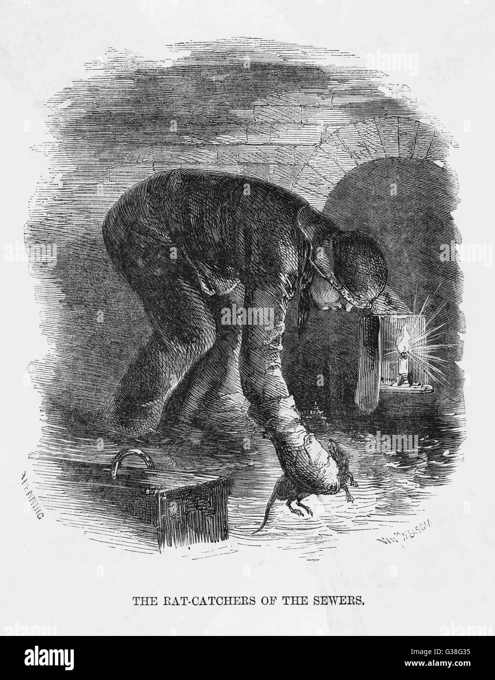 A rat-catcher at work in the  London sewers        Date: circa 1850 - Stock Image
