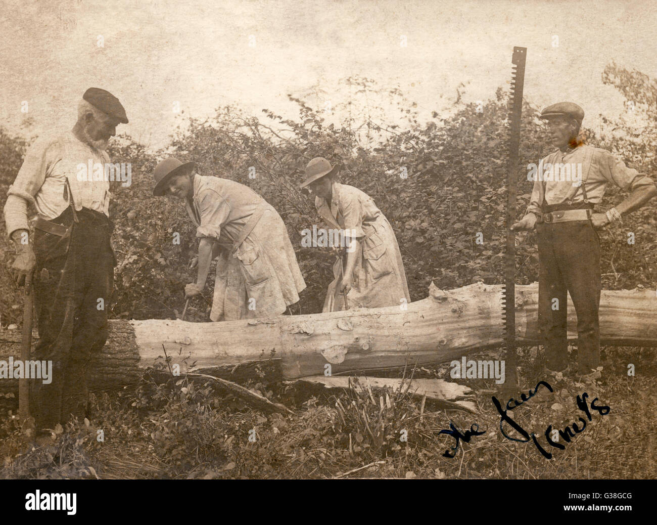 'Land girls' of the first  World War manoeuvre a heavy  log under the appraising  eyes of two countrymen - Stock Image