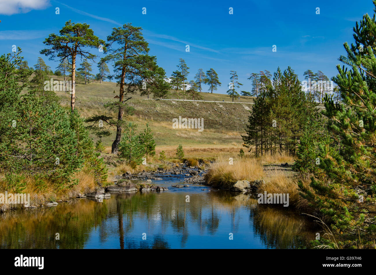 View at small river at Zlatibor mountain in Serbia - Stock Image