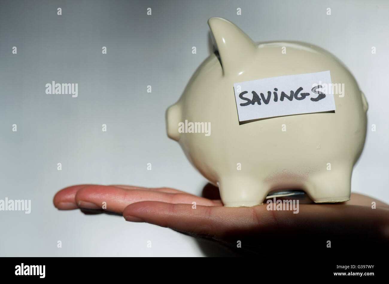 A woman holds a piggy bank with the word savings on it in Montreal, December 2013. photo Graham Hughes/Freelance - Stock Image
