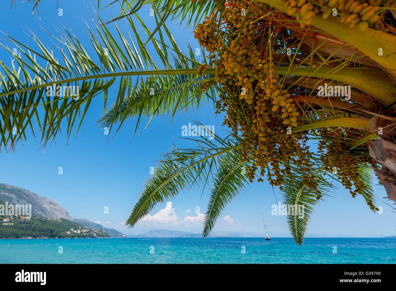 Greek landscape - Stock Image