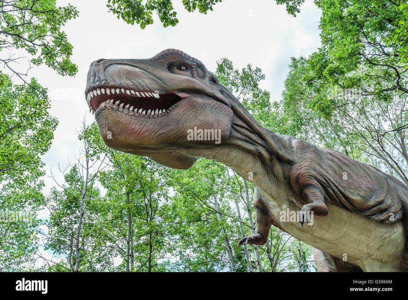 Tyrannosaurus Rex at Dinosaurs Alive - Stock Image