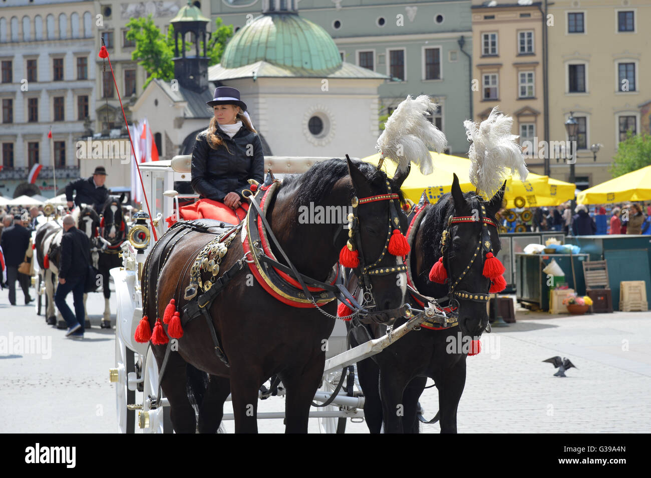 Beautifully decorated horses and a coach on Krakows famous market place Rynek, Church of St. Adalbert in the background. - Stock Image