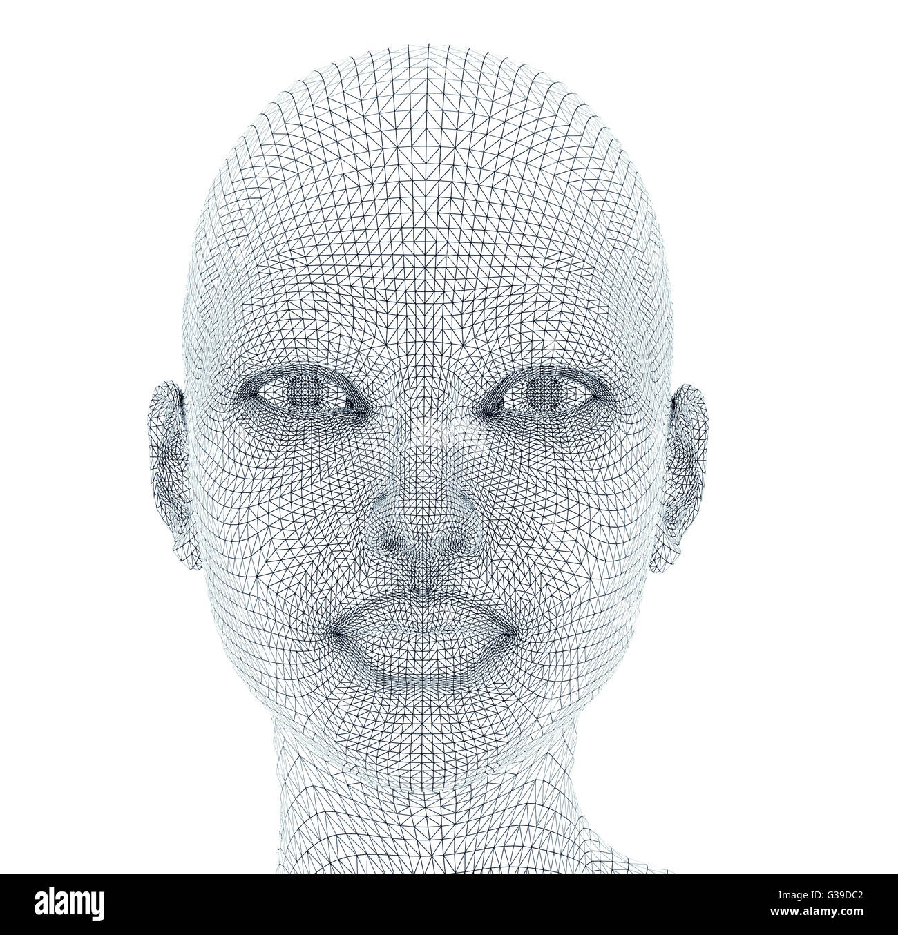 woman face in wireframe lines isolated on white Stock Photo ...