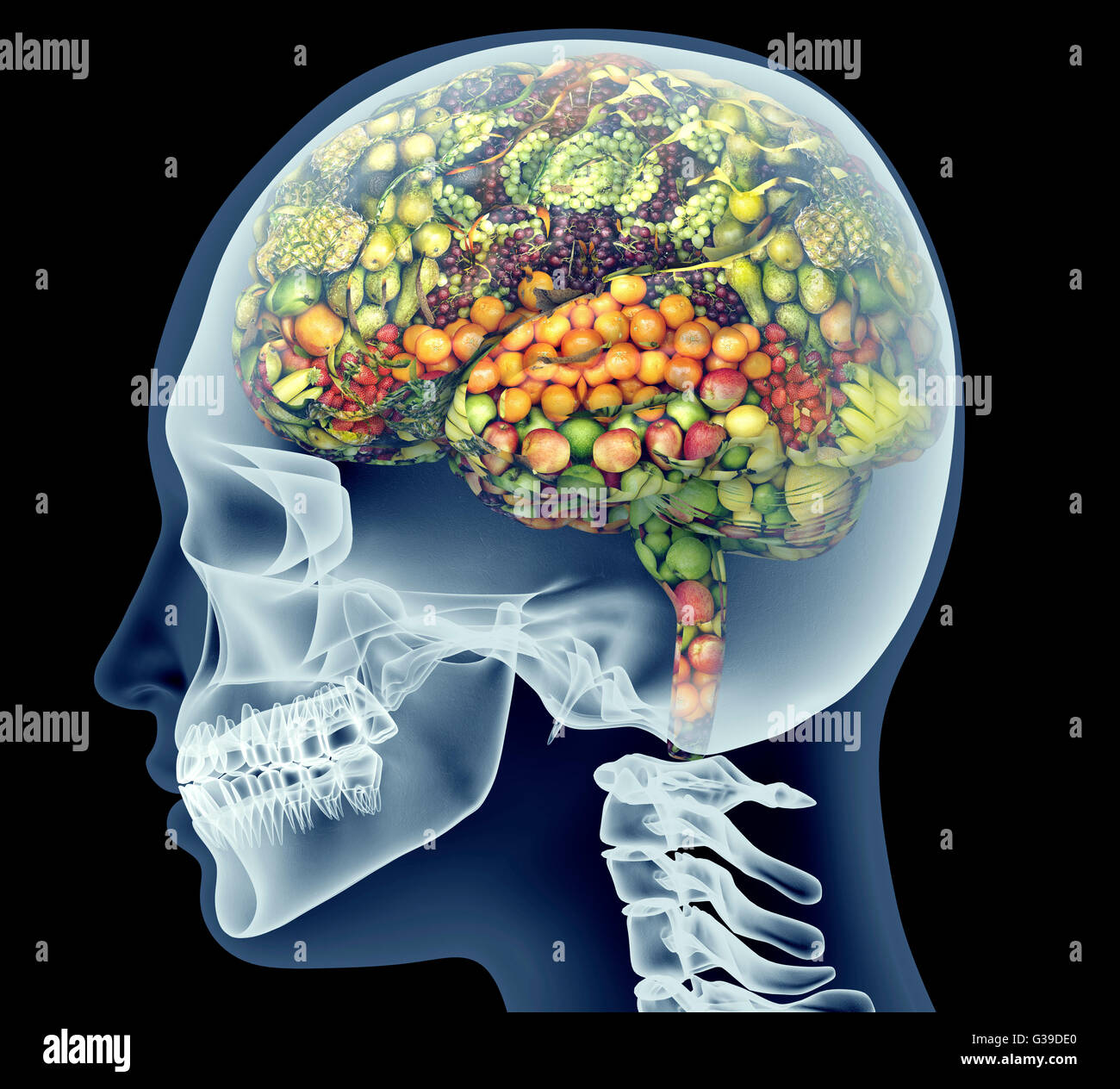 x-ray of human head with fruit and vegetables for brain. - Stock Image