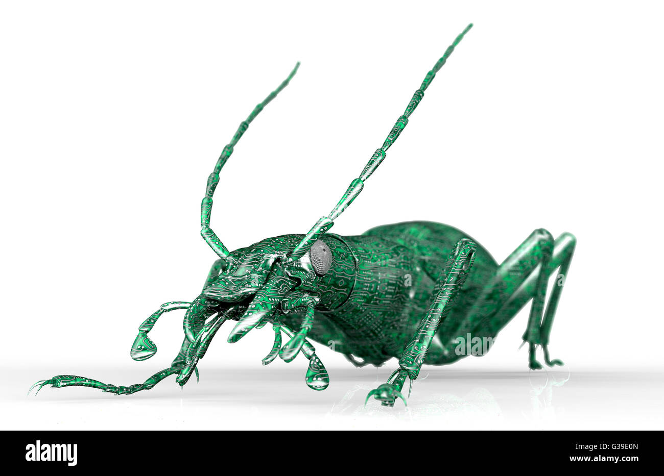 digital safety concept, computer bug isolated on white, 3d illustration - Stock Image