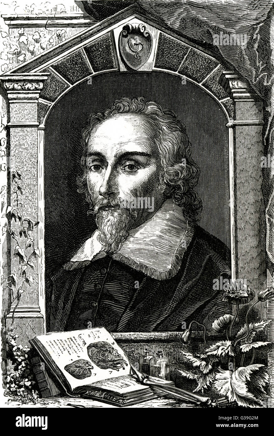 WILLIAM HARVEY English physician and anatomist, portrayed with an ...