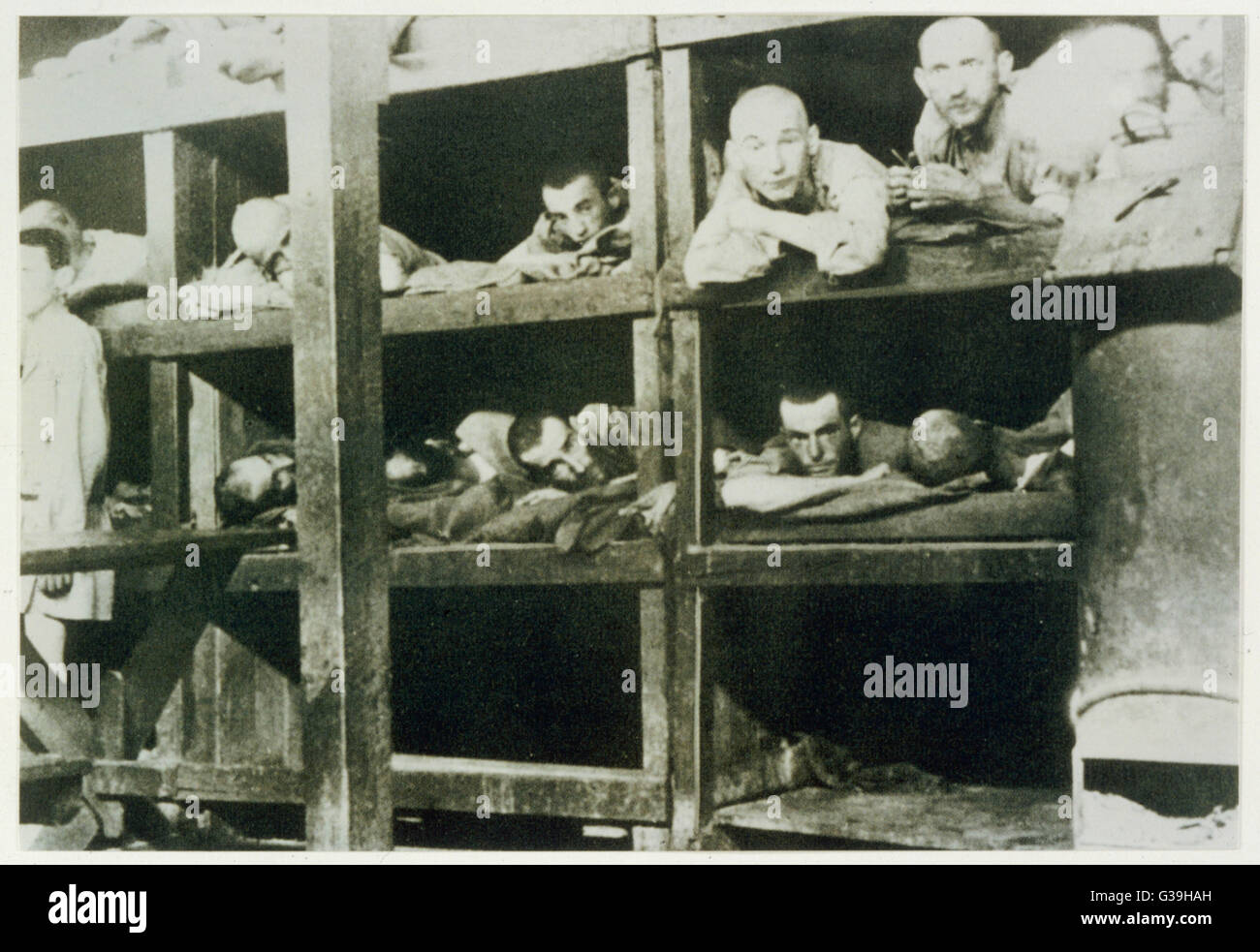 Inmates at Auschwitz lying in  their bunks.  After the conquest of Poland,  Auschwitz was transformed into  an Extermination - Stock Image