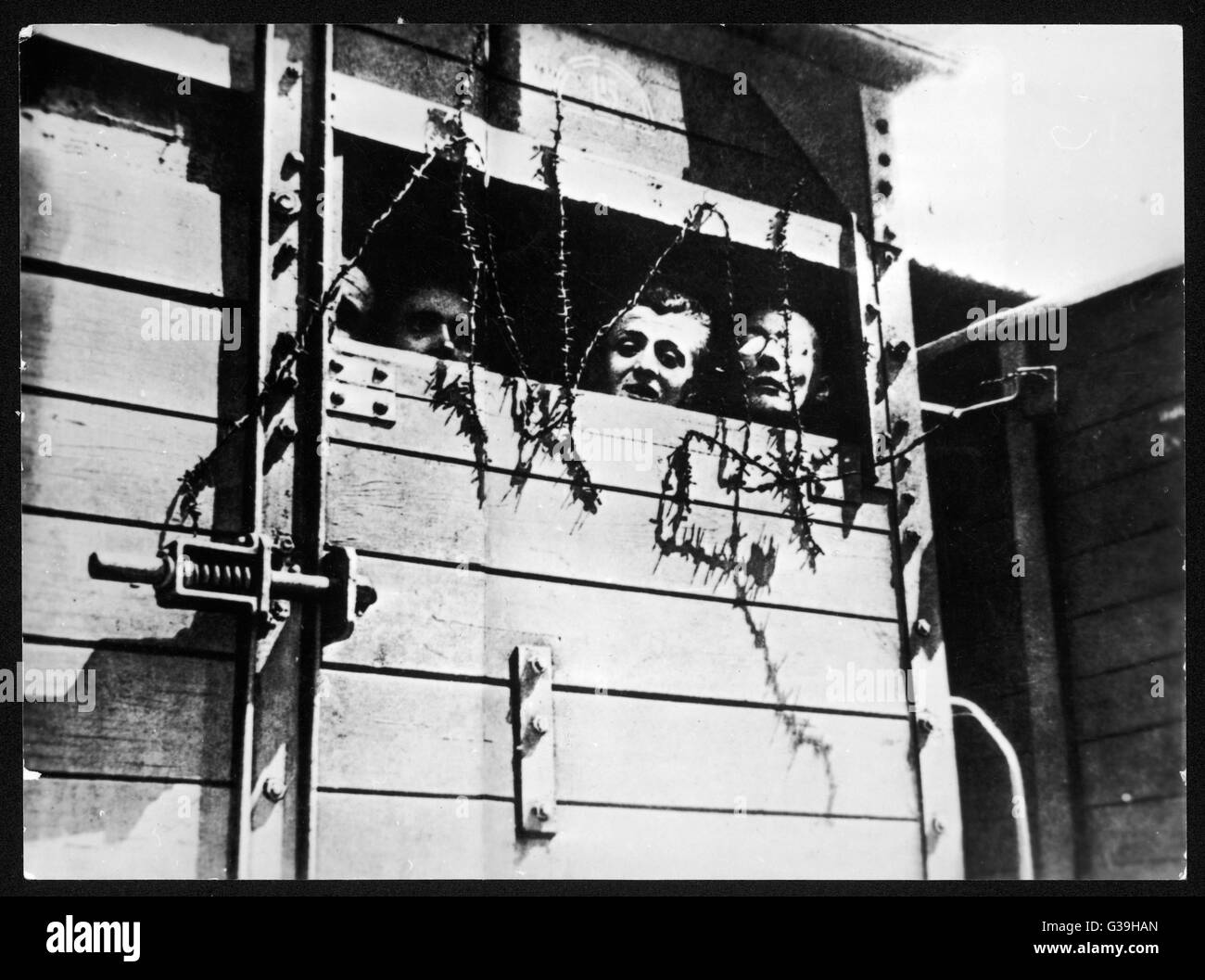 Concentration Camps Black and White Stock Photos & Images - Alamy on the outline of the concentration camps, graph of the concentration camps, map of concentration ca ps, map of world war ii concentration camp germany, map of german concentration camps, printable map of germany with concentration camps, map of germany with concentration camps ww2, map of nazi concentration camp locations, map of concentration camps during ww2, gas chambers in concentration camps, us map of concentration camps, map of concentration camps during holocaust, introduction of the concentration camps, map concentration camps in germany, map of concentration camps in europe,
