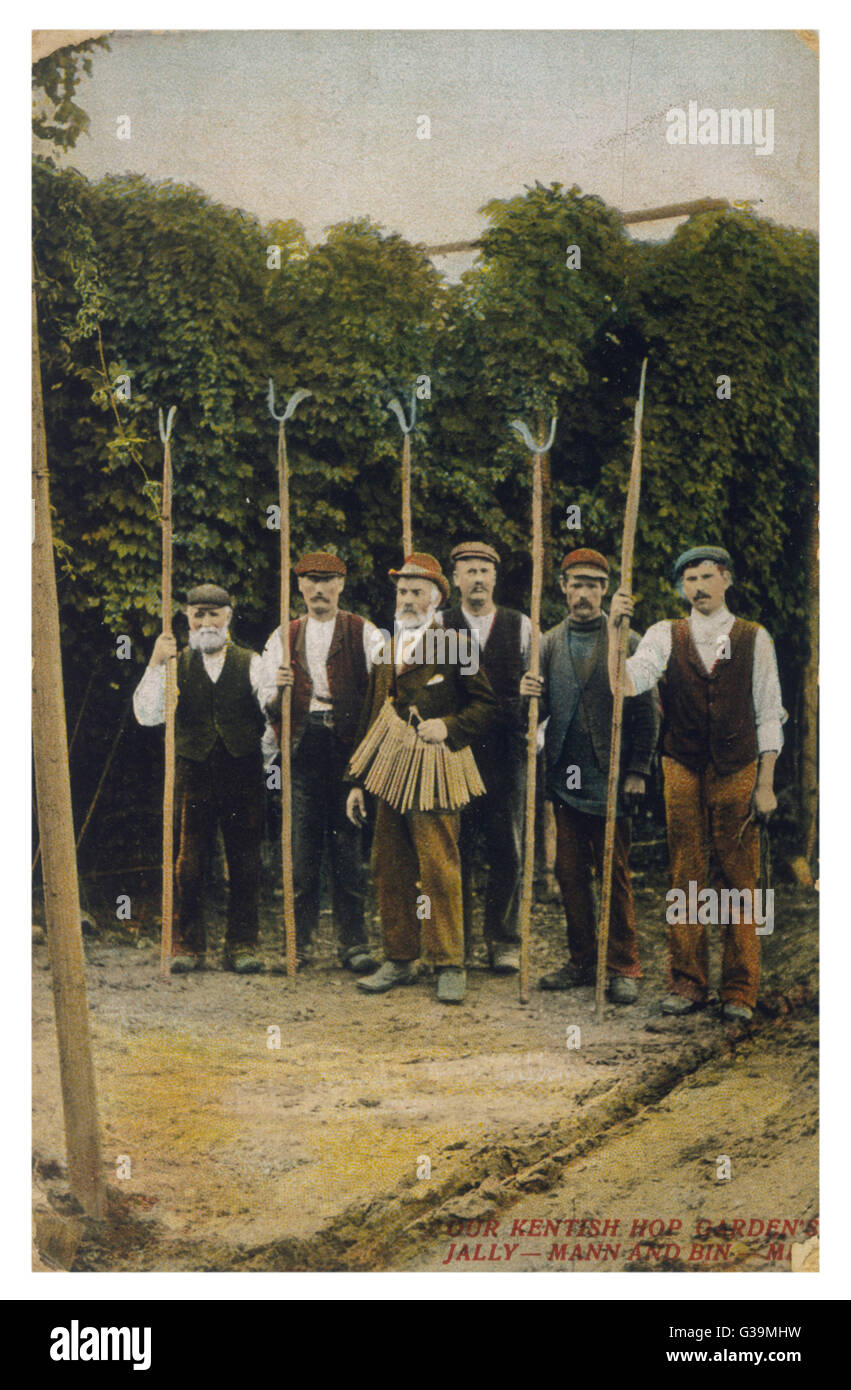 Workers in a Kentish hop  garden.         Date: circa 1905 - Stock Image