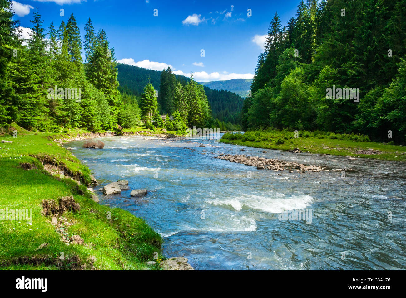 landscape with mountains trees and a river in front - Stock Image