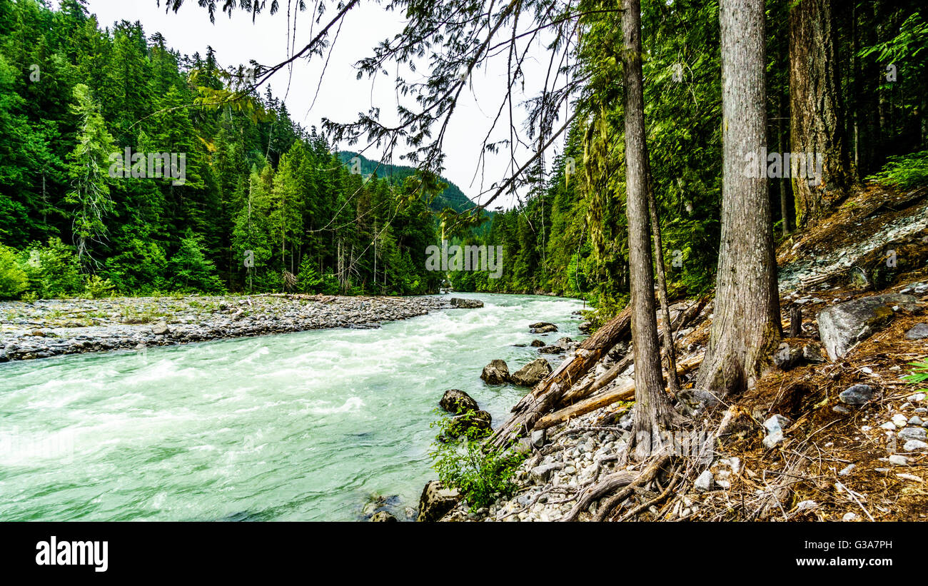 The turquoise water of the Lillooet River after the Nairn Falls in Nairn Falls Provincial Park between Whistler - Stock Image