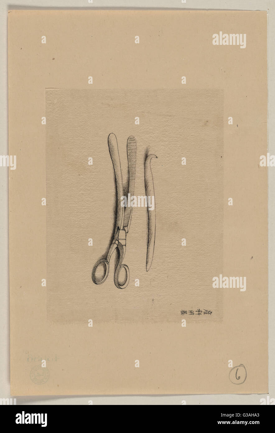 Scissor clamps and hooked probe?. Date 1878?. - Stock Image