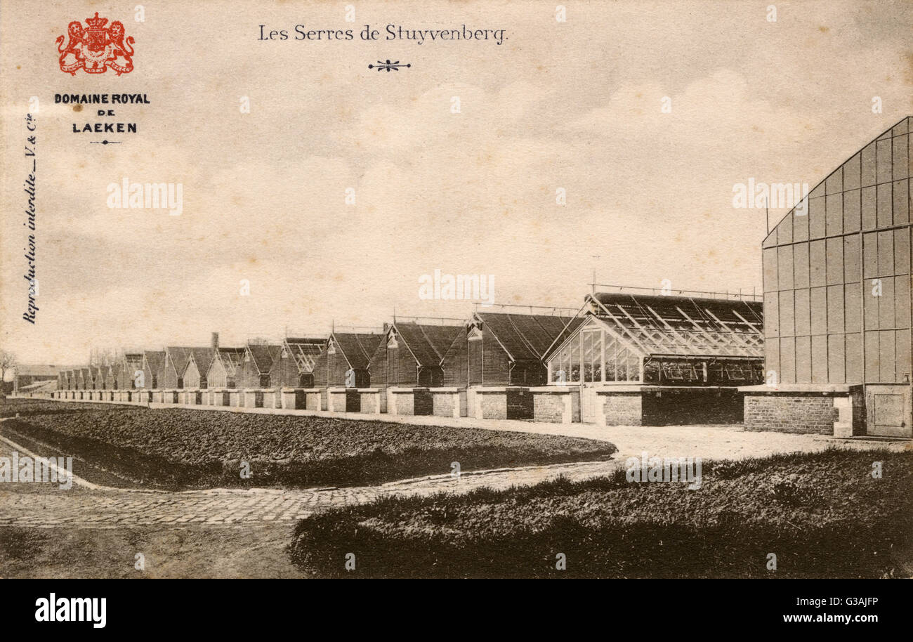 Stuyvenberg, Laeken, Belgium - A long row of Greenhouses     Date: circa 1910s - Stock Image