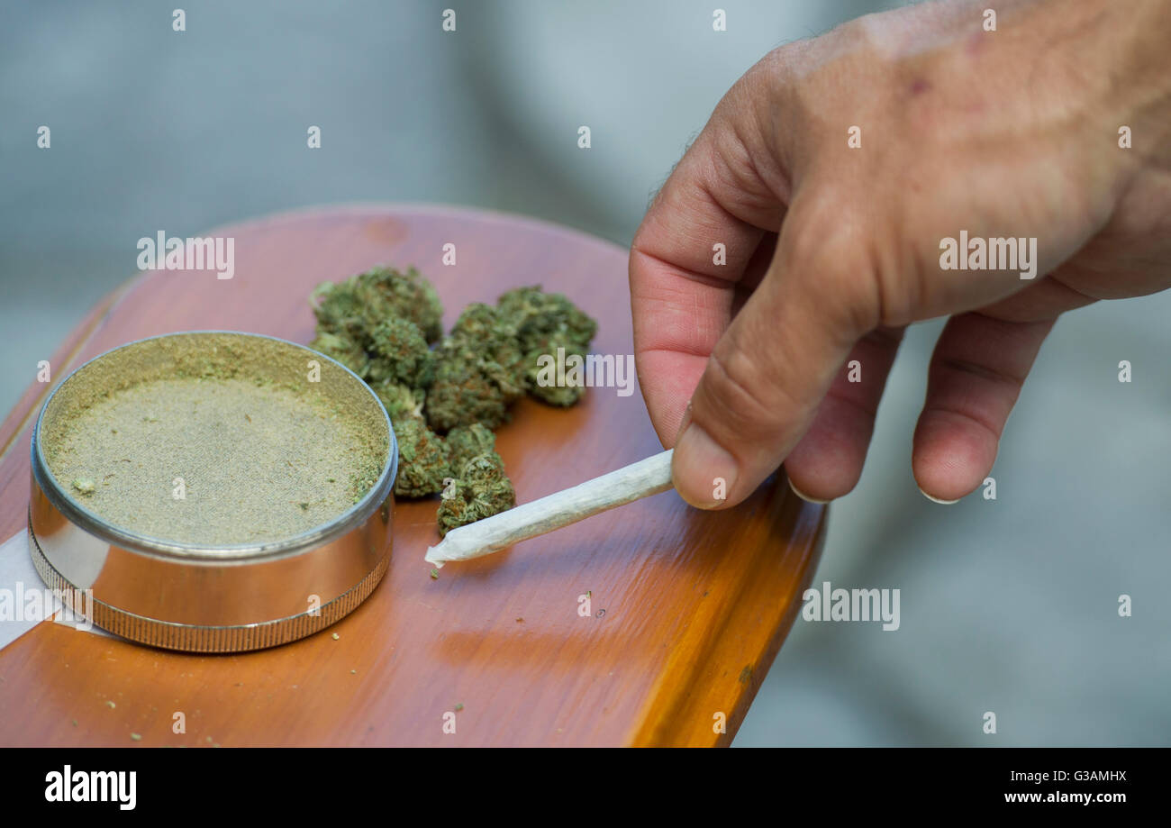 A man picks up a Cannabis joint in Montreal, August, 2014. photo Graham Hughes/Freelance - Stock Image