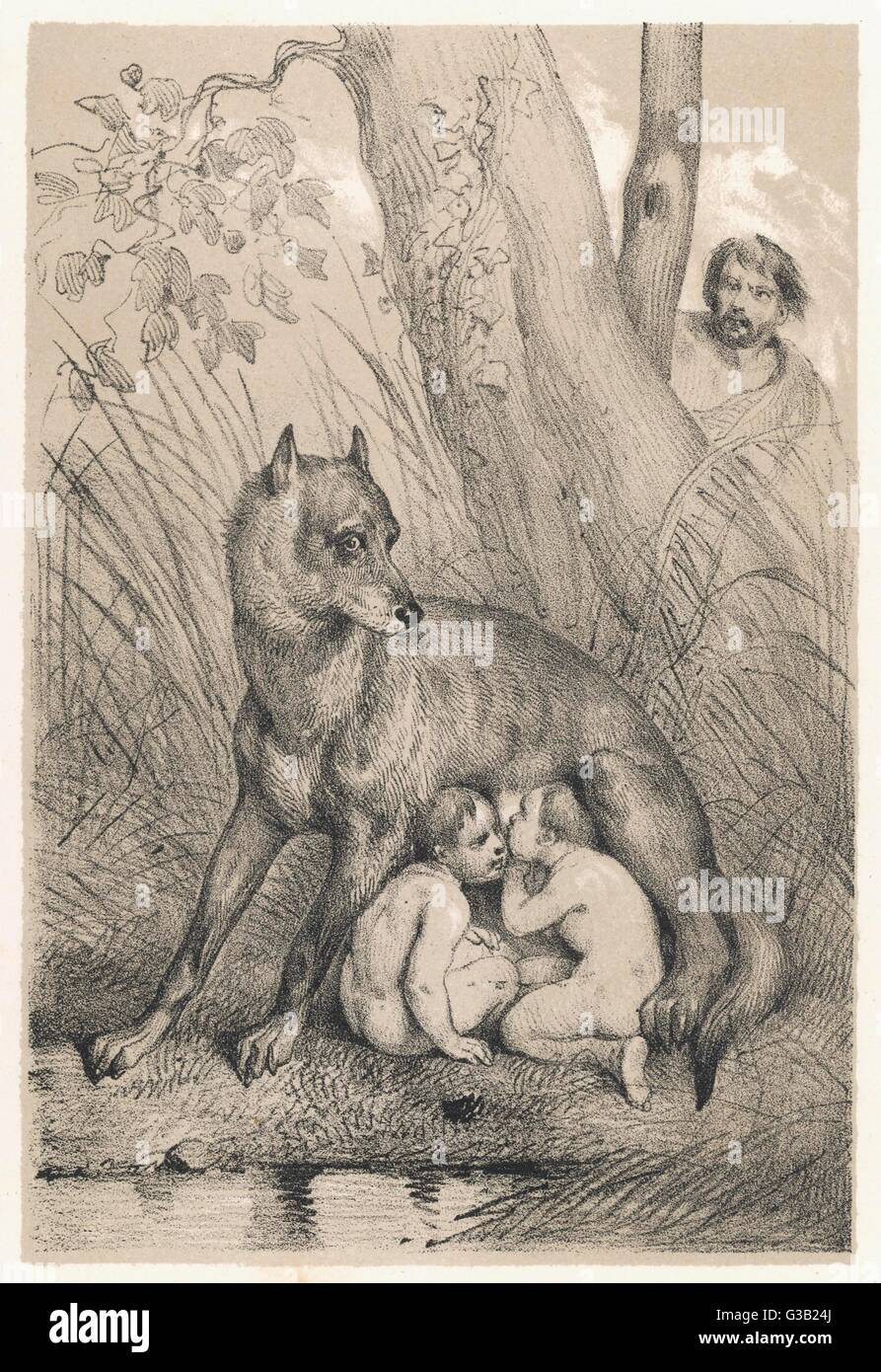 Romulus and Remus are fostered  by a kindly she-wolf, and live  to found the Roman state        Date: circa 780 - Stock Image