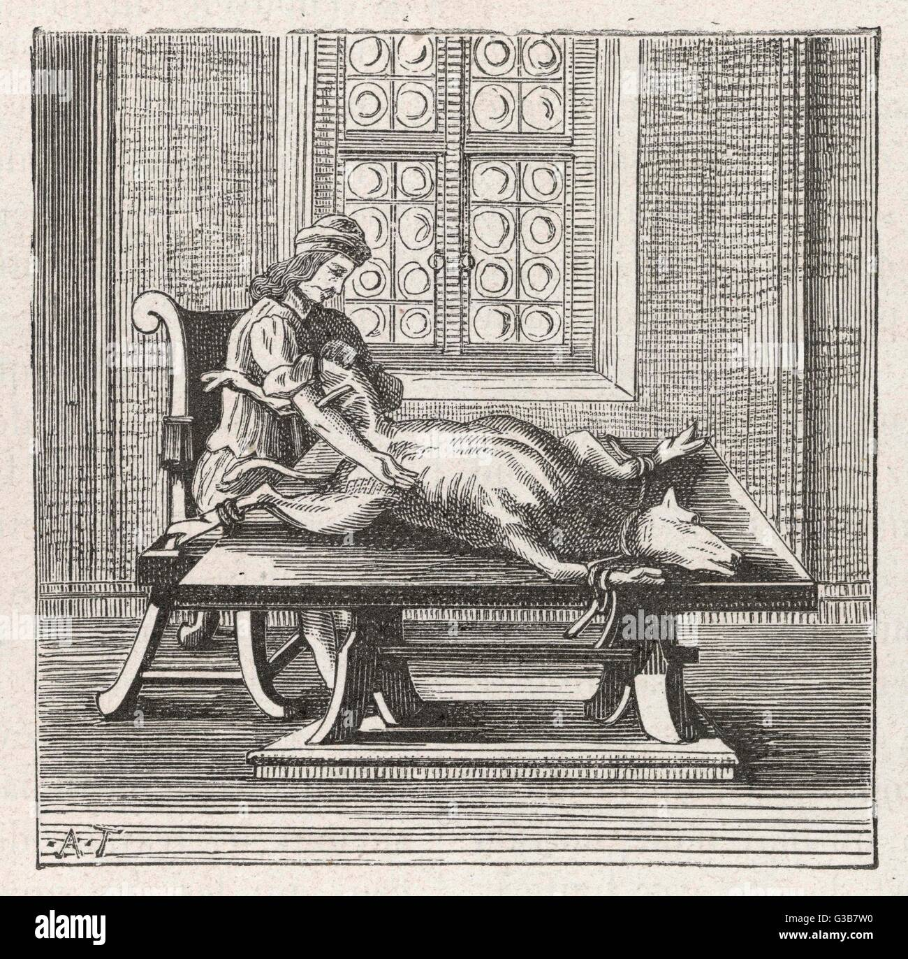 Blood transfusion, from an animal to a man         Date: 1679 - Stock Image