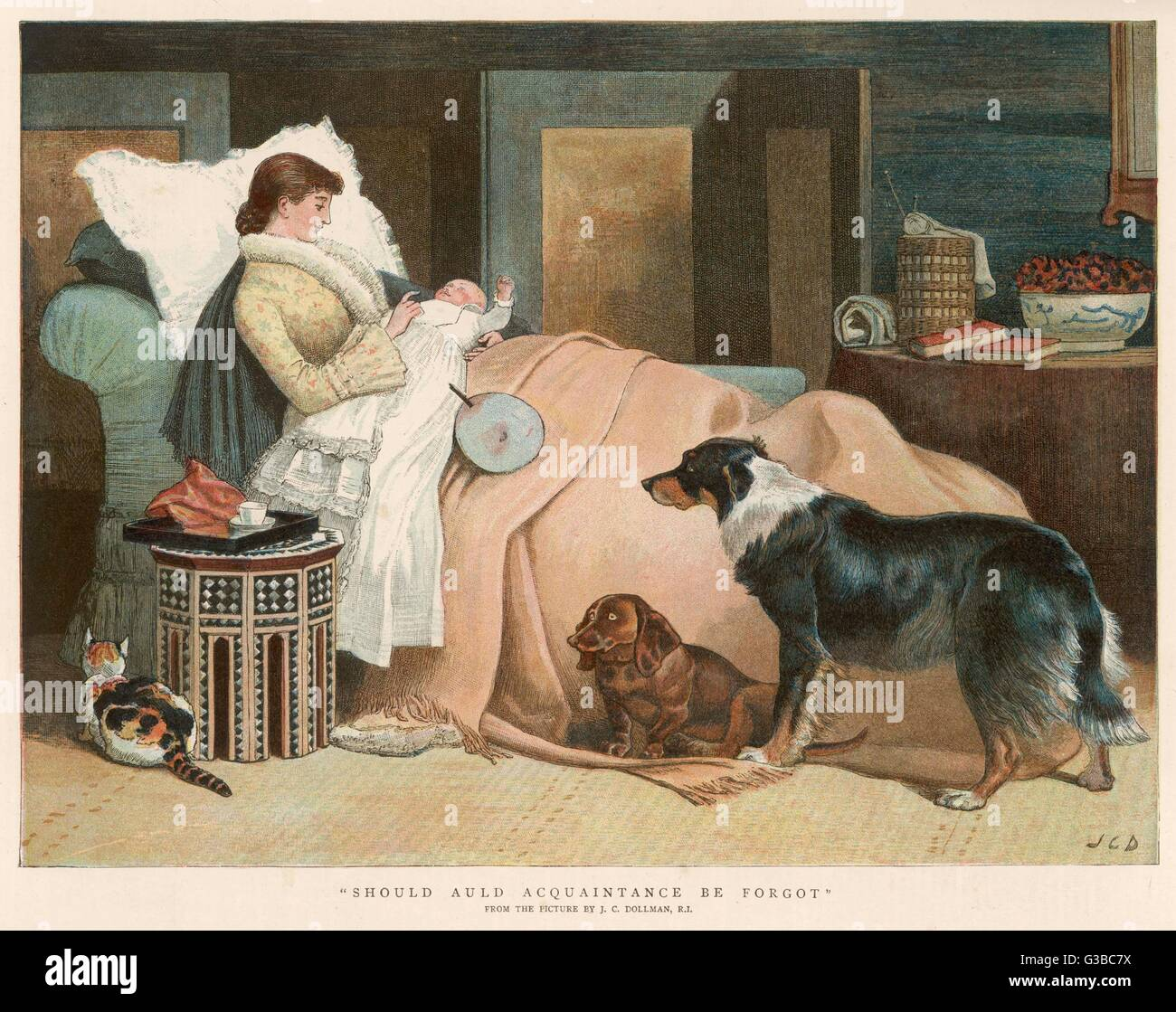 A new mother sits up in bed  nursing her baby, while two  dogs and a cat feel somewhat  neglected.      Date: 1888 - Stock Image