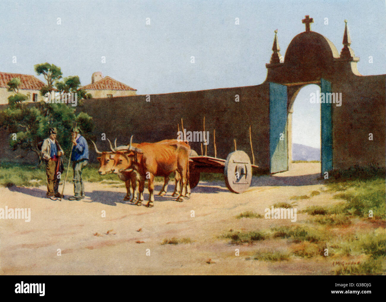 Two oxen wait patiently while  their driver passes the time  of day with an acquaintance.       Date: 1909 - Stock Image