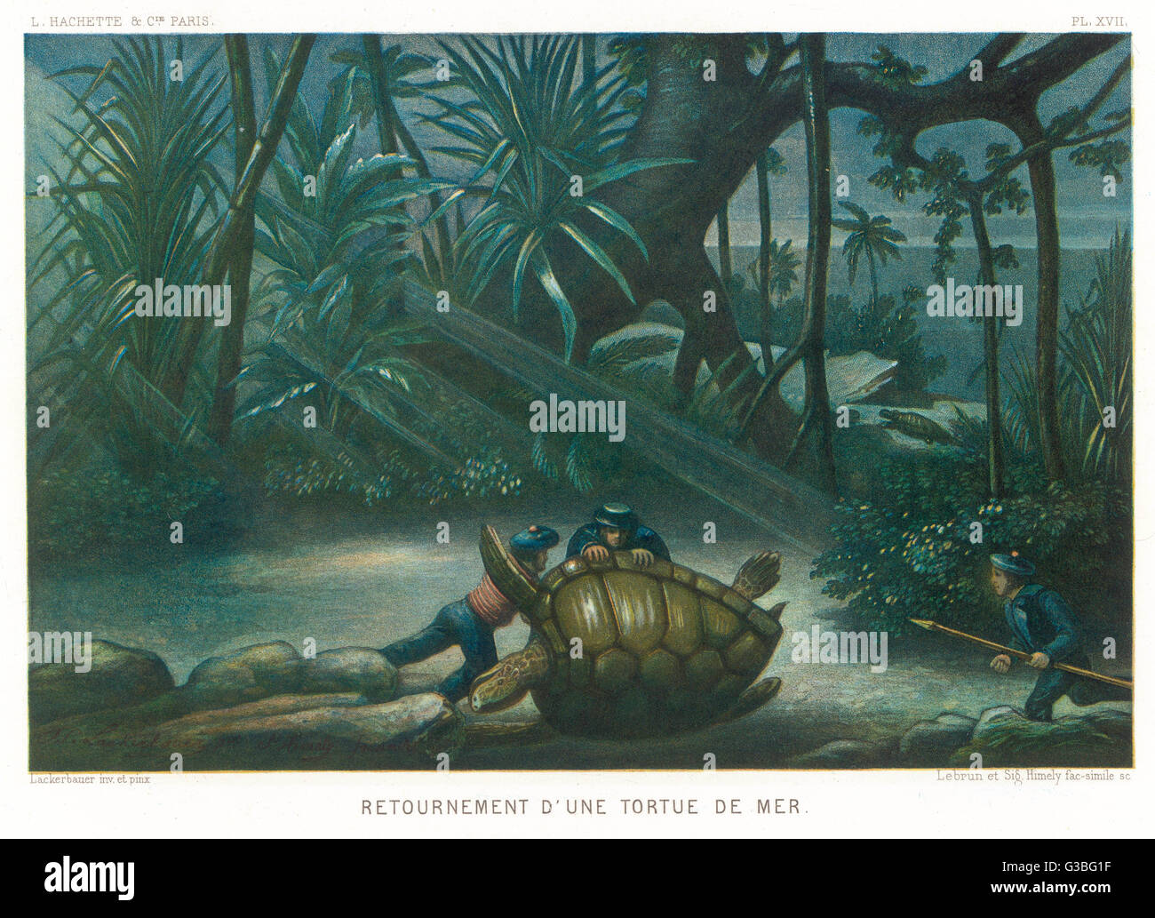 Hunting turtles.  Having  captured a turtle, it is  turned on its back so it  cannot escape.       Date: 1865 - Stock Image