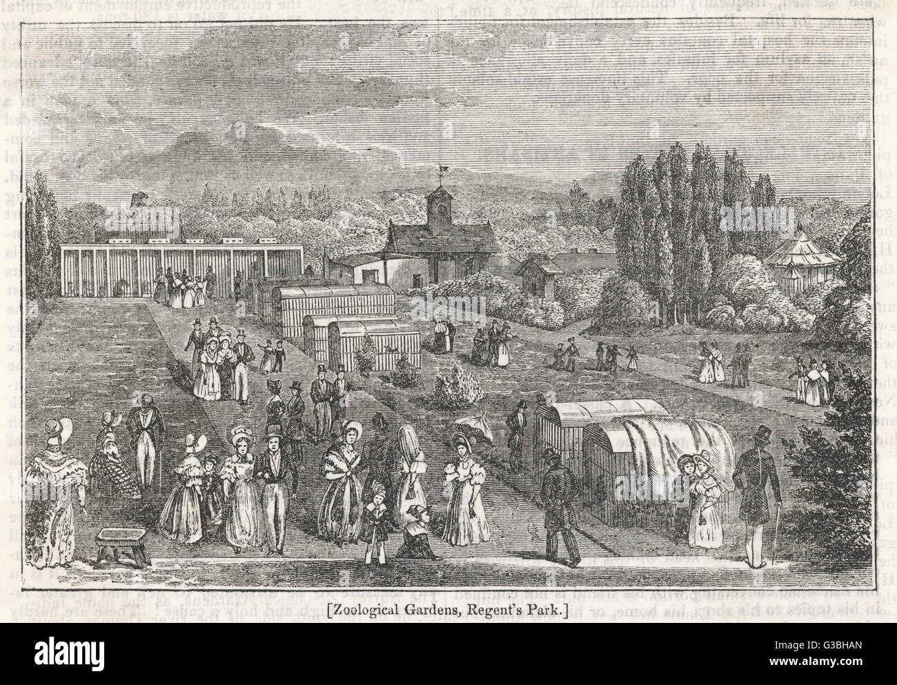 Regent's Park, London :  the gardens of the Zoological  Society were opened to  Fellows of the Society in  1828, Stock Photo
