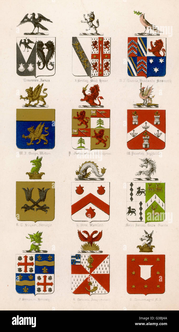 The coats of arms of twelve  British families.        Date: 19th century - Stock Image