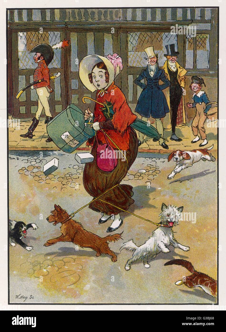 A lady crossing a street with  an armful of parcels gets into  difficulties when her two dogs  each decide to chase - Stock Image
