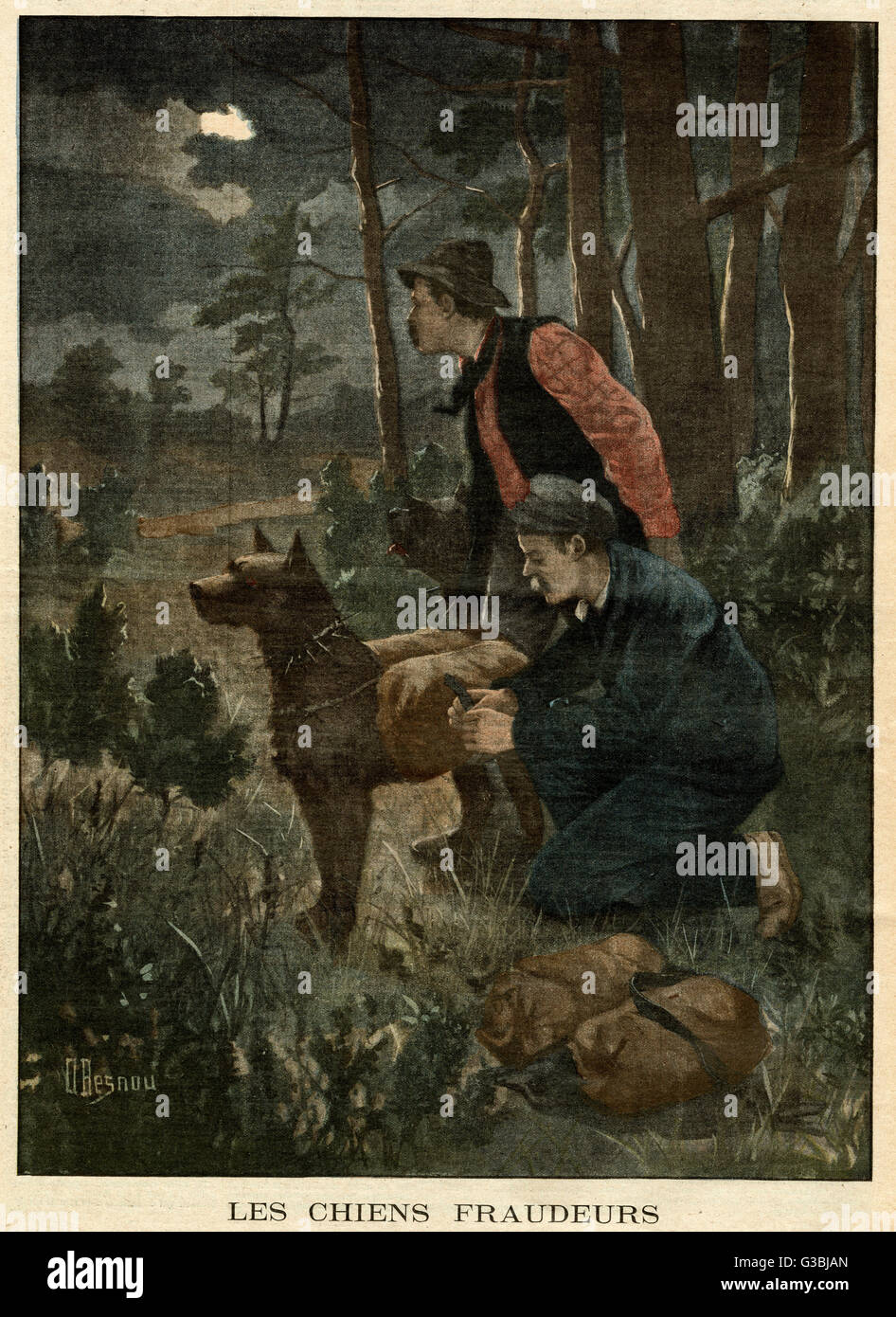 Dogs are employed by smugglers  to carry contraband goods  across the Belgian border.       Date: 1902 - Stock Image