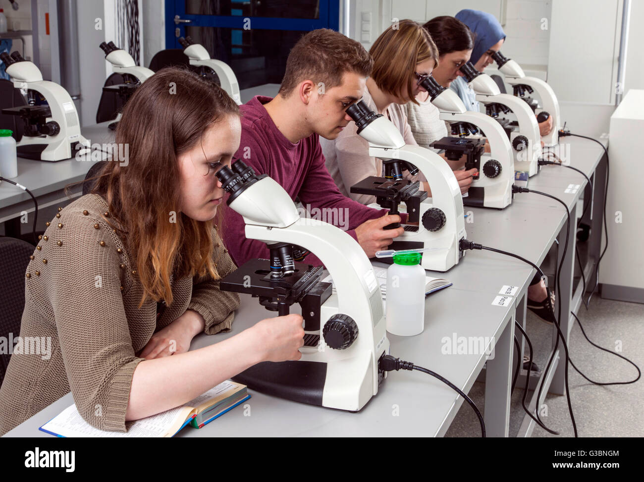 Students in a microscopy course at the university DUE - Stock Image