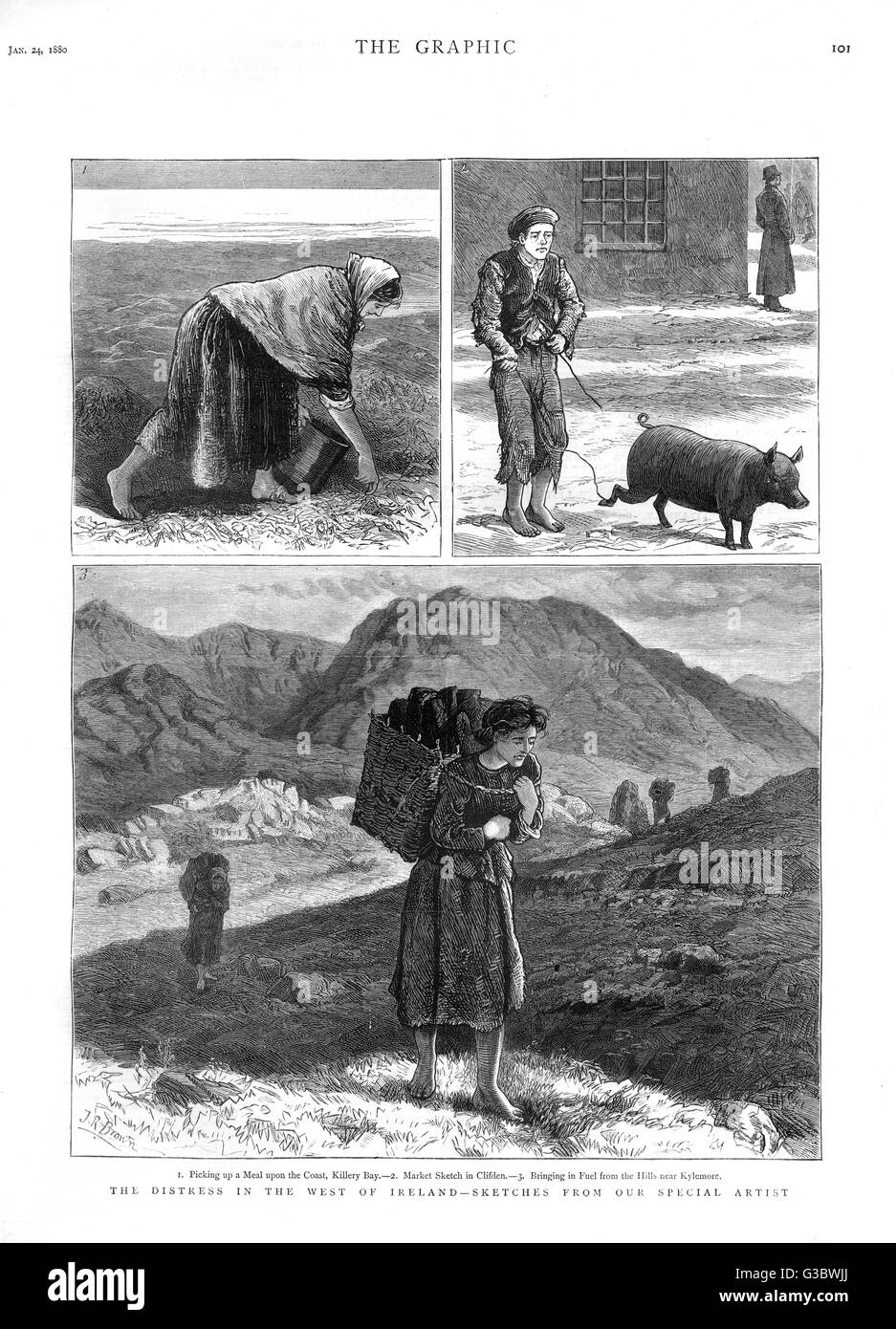 The distress in Ireland-sketches by The Graphic special artist J.R Brown. Scenes picking up a meal upon the coast, - Stock Image