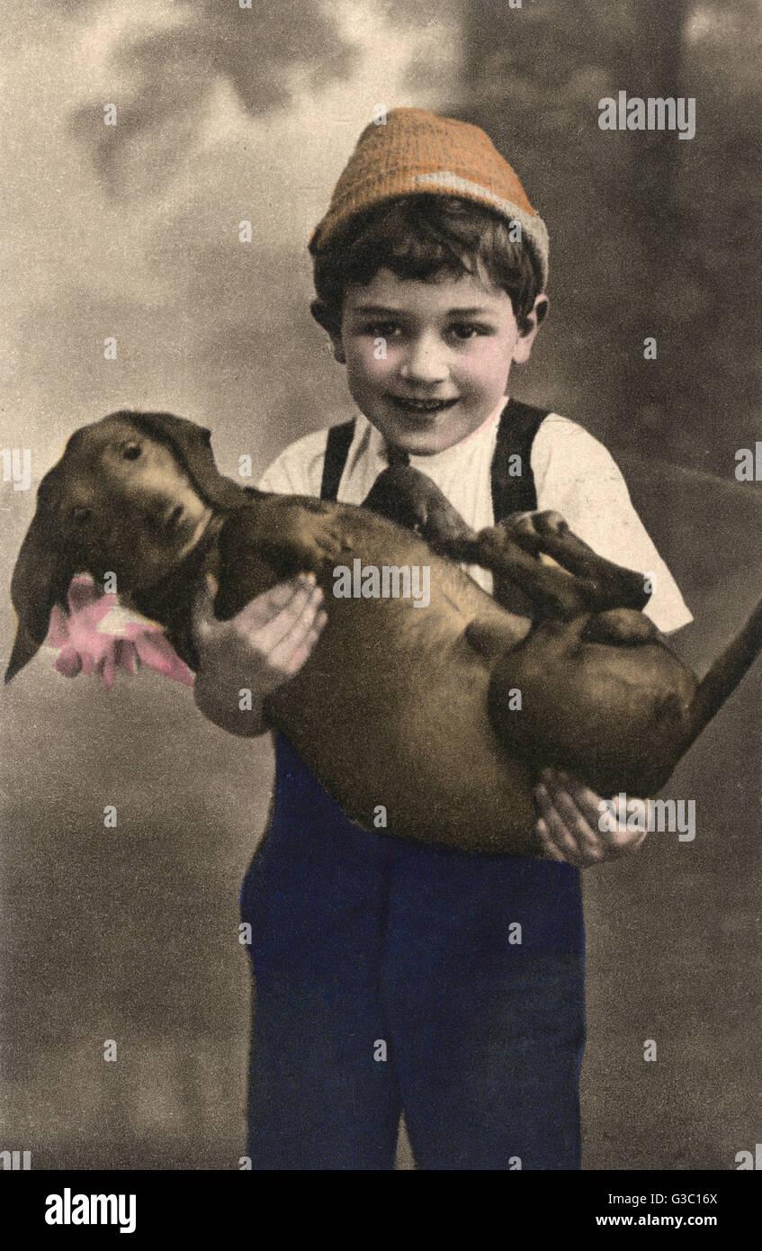 Studio portrait, little boy holding a rather plump dachshund.      Date: circa 1910s - Stock Image
