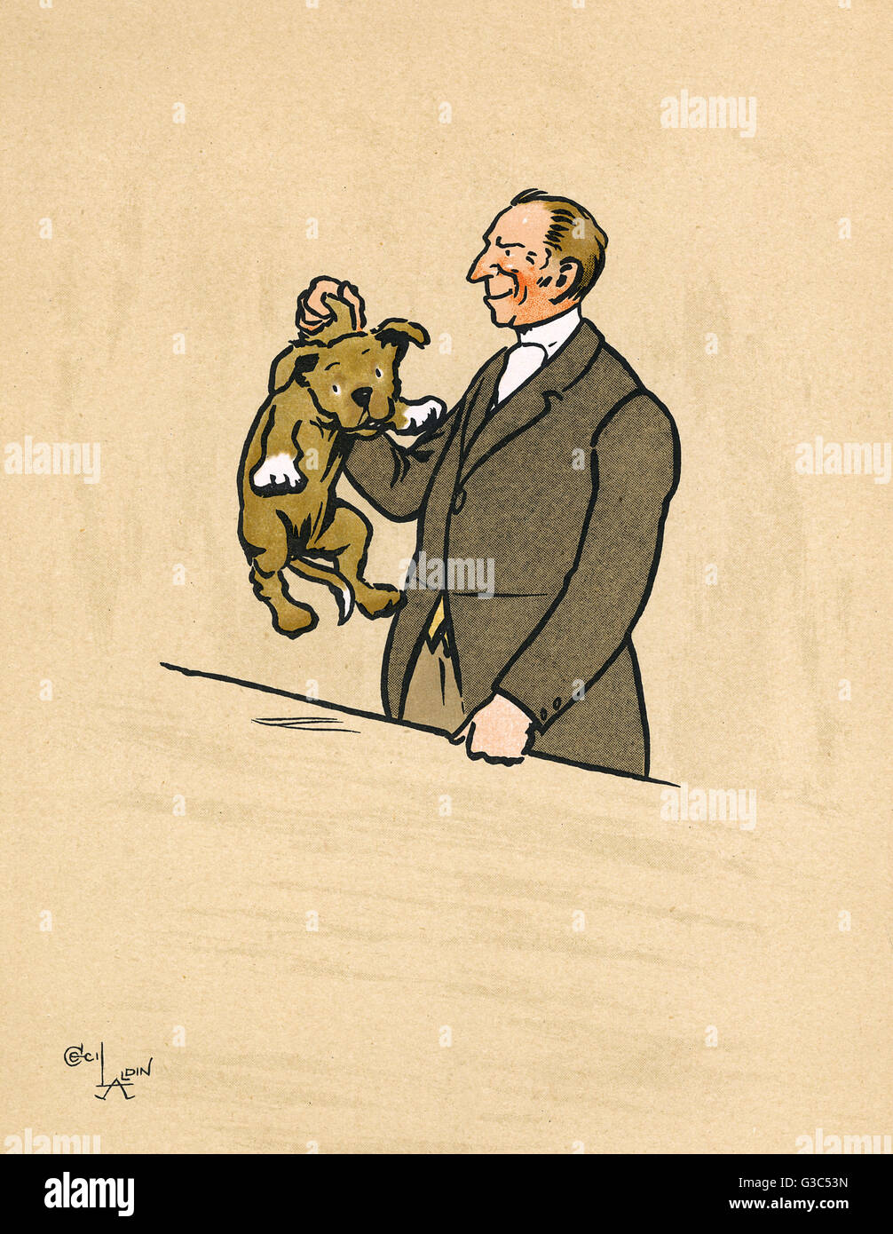 Mongrel puppy identified by the vet -- he is a mongrel who has already reached his full size.      Date: 1914 - Stock Image