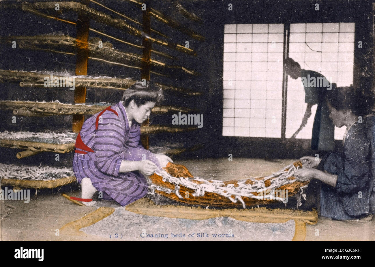 Japanese Silk Industry - Cleaning silk worm beds.     Date: circa 1910 - Stock Image