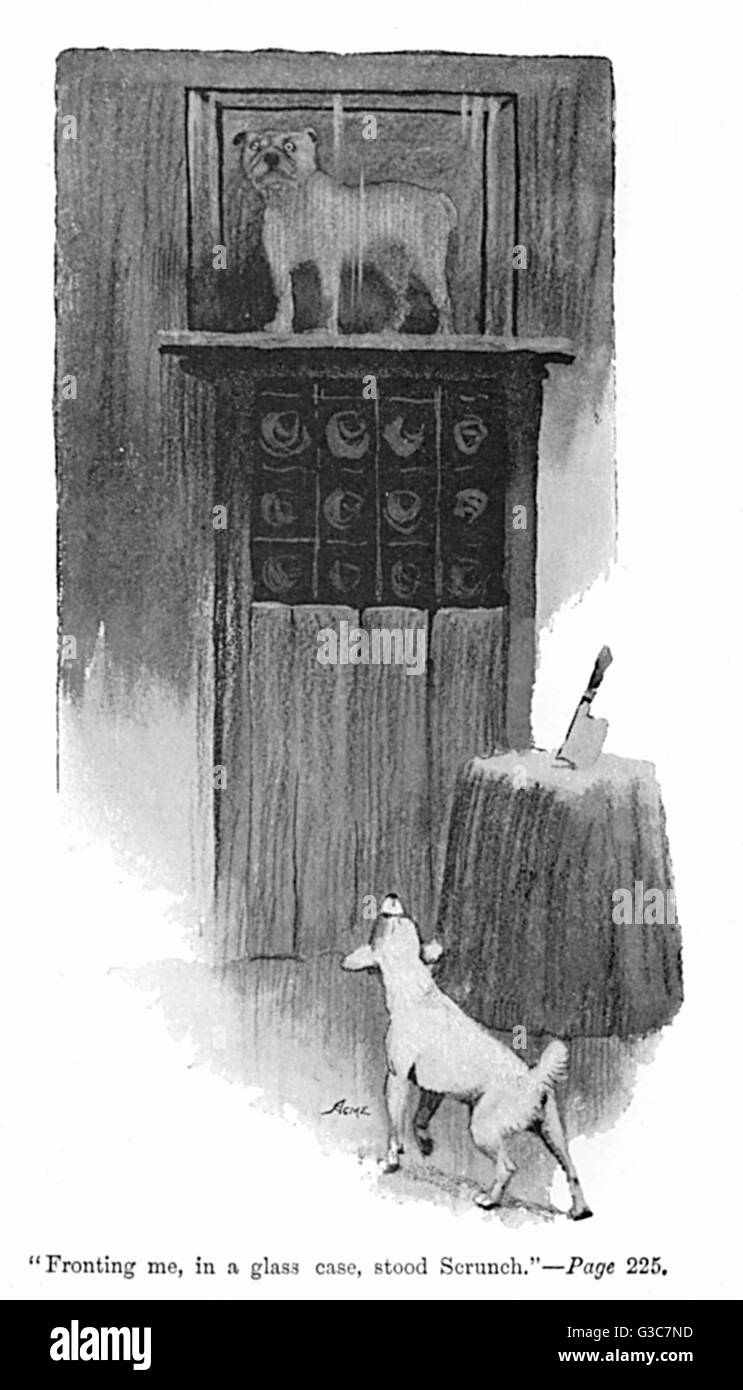 "Illustration by Cecil Aldin, Spot sees Scrunch, the bulldog, in a glass case at the butcher's shop. ""Fronting - Stock Image"