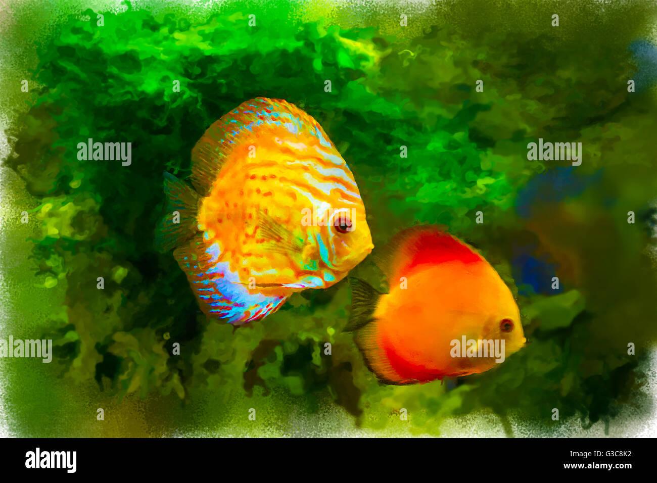 Watercolor Fish Illustration Stock Photos & Watercolor Fish ...