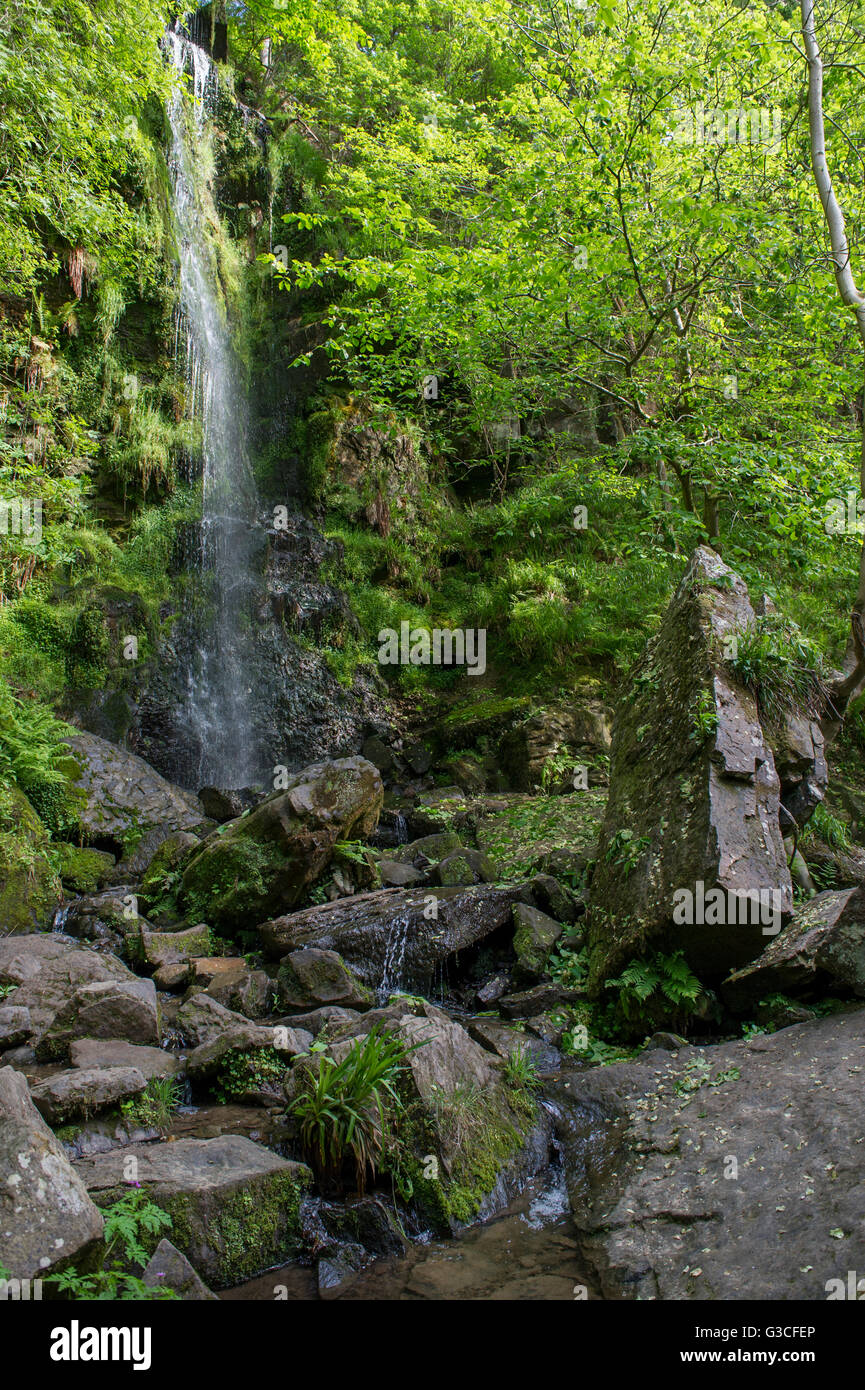 A photo of the water cascading down Mallyan Spout waterfall on the River Esk just outside Goathland - Stock Image