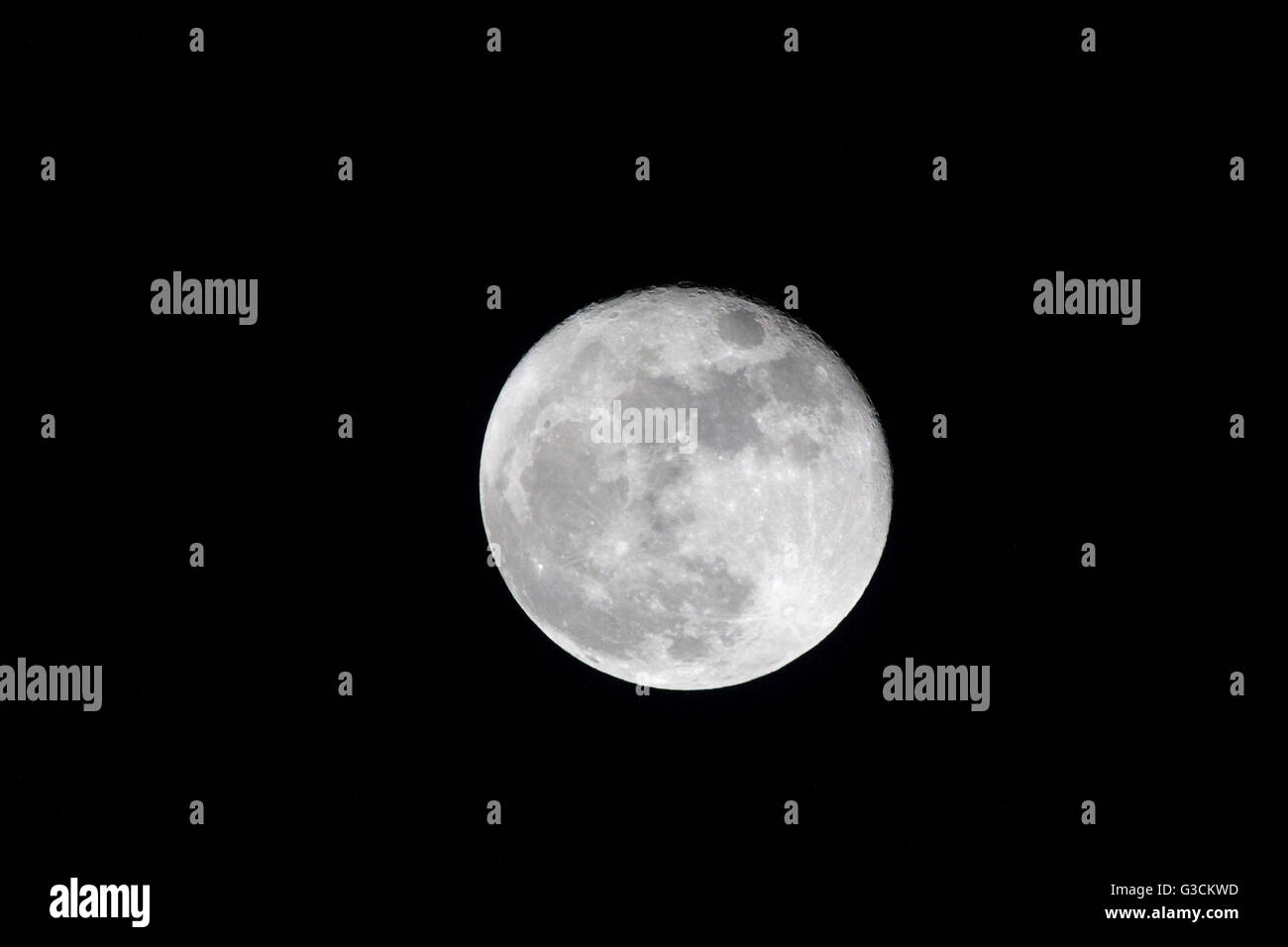 Full moon - Stock Image